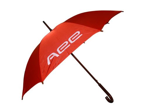 AEE促销礼品雨伞