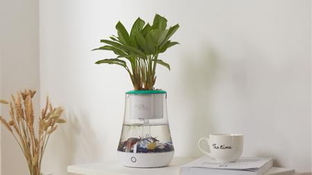 植物智能花盆仿陶瓷塑料简约创意圆形多肉花盆多彩花瓶防腐